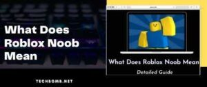 What Does Roblox Noob Mean